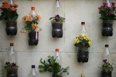 Ideas for making planters out of recycled plastic bottles Plastic Bottle Planter, Reuse Plastic Bottles, Plastic Bottle Crafts, Recycled Bottles, Jardin Vertical Diy, Vertical Garden Diy, Diy Hanging Planter, Hanging Planters, Planter Ideas