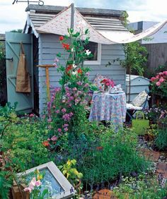 Nice shed and flowers (smart idea with positioned trellises for shade cloth)