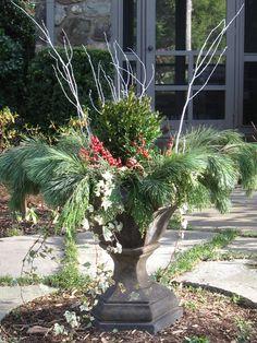 Lovely Winter Container Garden Idea