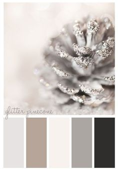 Elegant Winter Hues Warm Grays, Off White, Silver, Black, Khaki and A Hint Of Shimmer Color Scheme Palette - Decoration for House Colour Schemes, Color Combos, Taupe Color Palettes, Ideias Diy, Deco Design, Color Pallets, Pine Cones, House Colors, Color Inspiration