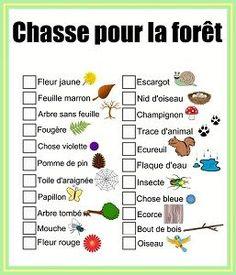French Scavenger Hunt. Chasse au trésor de balade en français