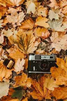 c81c8a6c9709 Thanks to   sinout for making this photo available freely on  unsplash 🎁  Vintage Cameras