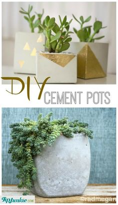 DIY Cement Pots-jpg