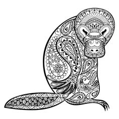 Duck Billed Platypus totem for adult anti stress coloring page for art therapy, tribal illustration in doodle style.