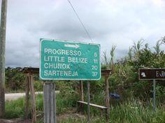 Shipyard, Belize | PhotoGallery Belize agricultural habitats - A Birder's Guide to Belize