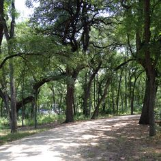 Brackenridge Park - San Antonio, TX.  Great place to visit.  The San Antonio Zoo is located here.