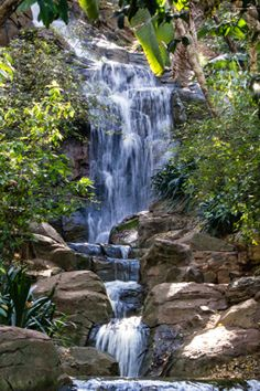 Waterfall, Pretoria Botanical Gardens Stuff To Do, Things To Do, Pretoria, My Town, Botanical Gardens, My World, Places Ive Been, South Africa, Waterfall