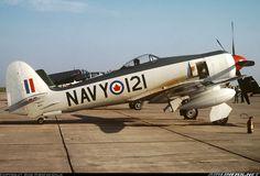 Hawker Sea Fury FB11 in Canadian colors