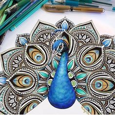 peacock drawing - Google Search