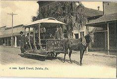 Palatka, FL - Rapid Transit Mule Trolley