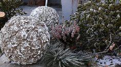 Kule betonowe Kobea Ogrody i Bruki