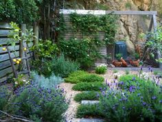 Herb garden and chook house..