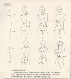 Anatomy for the Artist Human Anatomy Drawing, Human Figure Drawing, Fine Art Drawing, Figure Drawing Reference, Art Reference Poses, Drawing Body Proportions, Basic Drawing, Body Drawing, Anatomy Sketches