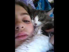 my fluffy cat sleeping on my head