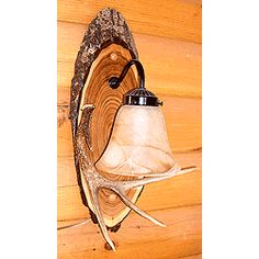 Whitetail Deer Antler Wall Sconce with Bell Shade