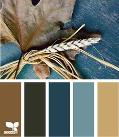 Autumn Tones: Dirty Brown, Dark Green Gray,  Night Sky Blue, Dusty Cornflower Blue and Tan - love this color combo