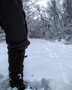 """28° F / -2° C with 3"""" / 8cm of new snow. Came to a T in my #trailblazing - not the first this morning in #mukluk #stegermukluks country"""