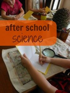 Science fun for after school play