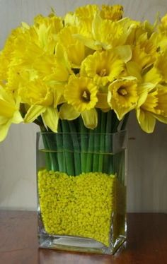 Flowers by Season I love daffodils. there will be a million of these at our wedding :-)I love daffodils. there will be a million of these at our wedding :-) Yellow Flowers, Spring Flowers, Cut Flowers, Halloween Wedding Flowers, Daffodil Wedding, Wedding Paper Divas, Spring Sign, Diy Garden, Do It Yourself Home