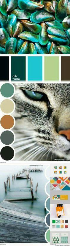 Aurora borealis-like colors, or abalone, even closer description! Cat eyes Scheme Color, Colour Pallette, Color Palate, Colour Schemes, Color Combos, Color Patterns, Decoration Palette, Nature Color Palette, Color Stories