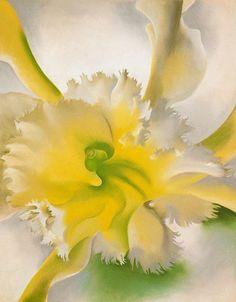 Maher Art Gallery: Georgia O'Keeffe 1887-1986