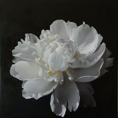 Artists Tatyana and Vadim Klevenskiy: paintings, fine art, biography, and partner galleries. Flora Flowers, White Flowers, Beautiful Flowers, Art Floral, Still Life Flowers, Plastic Art, Floral Photography, Flower Photos, Flower Art
