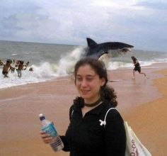 I have NO IDEA why this is so funny.but that random shark, Photoshopped or not, is too funny. You're just walking down the beach, relaxing, then RARRRRRRRRRRR you get eaten by le wild shark. Dc Memes, Funny Memes, That's Hilarious, 9gag Funny, Memes Humor, Funny Animals, Cute Animals, Perfectly Timed Photos, Ocean Colors