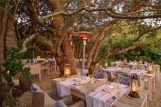 Luxury and Adventure Await during Secret Season at Grootbos Adventure Awaits, Places Ive Been, Seasons, Table Decorations, Luxury, Nature, Restaurants, Home Decor, Destinations