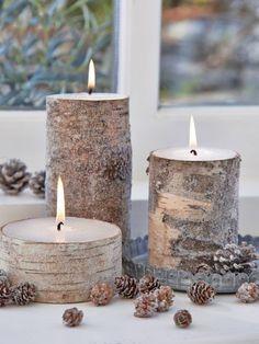 bouleau tronc décoration fantastique birch birch tronc bouleau tronc ...