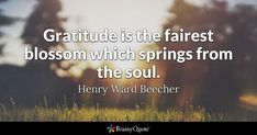 Gratitude is the fairest blossom which springs from the soul. - Henry Ward Beecher #brainyquote #QOTD #gratitude #life Fox Quotes, Brainy Quotes, True Quotes, Funny Quotes, The Rolling Stones, David Bailey, Dream Quotes, Quotes To Live By, Positive Attitude