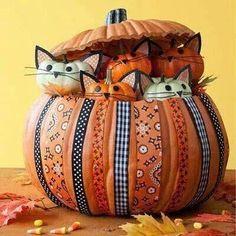 Great idea for those little pumpkins!