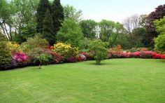 https://ru.depositphotos.com / Farina6000 : Цветущий сад