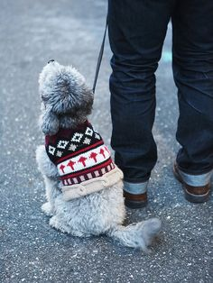 Peruvian Trading CO Shetland Dog Sweater at Free People Clothing Boutique