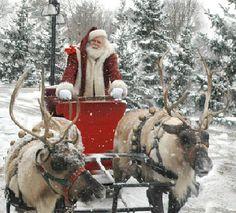 Santa riding a reindeer !!!