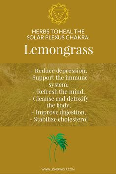 Quickly heal your SOLAR PLEXUS CHAKRA with an easy cup of Lemongrass. Click to get the tea ...