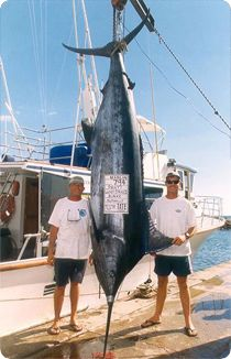 Maui Fishing Charter - Sport Fishing Boat on Hawaii http://www.agent.hawaiifun.org/5720928/Luckey+Strike+Charters.shtml