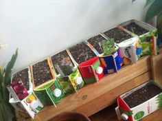 10 Formas De Hacer Semilleros Reciclados , tipo de semilleros , como hacer un semillero reciclado reciclar yogurt, poliexpan, bandeja , vaso de cafe