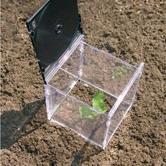 Create your own mini greenhouse by recycling old CD cases. Cd Crafts, Recycled Crafts, Recycled Cds, Recycled Decor, Repurposed, Diy Garden, Garden Projects, Garden Beds, Mini Serre