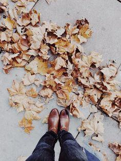 Walk among the leaves.