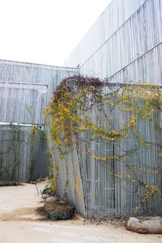 Francisco Giner de los Ríos Foundation.. Courtyards.. Green climbers.. And what seems to be a rebar facade.. THEULIFESTYLE