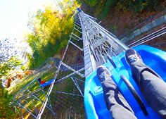 Check out our Camelback Mountain Adventure's Mountain Coaster! #MyCamelback