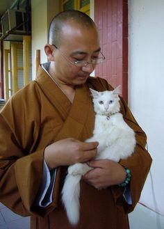 cat and monk :)