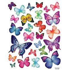(20x28) Vivid Colorful Butterflies Repositional Wall Decal - http://pinfaves.net/categories/home-decor/vinyl-wall-art/20x28-vivid-colorful-butterflies-repositional-wall-decal/