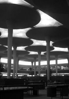 Johnson Wax building by Frank Lloyd Wright Classic Architecture, Organic Architecture, Amazing Architecture, Architecture Details, Interior Architecture, Frank Lloyd Wright, Philip Johnson, Gaudi, Luigi Snozzi