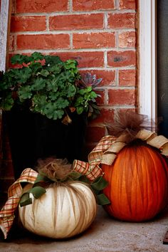 Could be a good way to reuse pumpkins after Halloween. Cover in black tulle with spooky faces, then remove after Halloween and have fall pumpkins again. Fall Pumpkins, Halloween Pumpkins, Fall Halloween, Velvet Pumpkins, White Pumpkins, Autumn Decorating, Pumpkin Decorating, Decorating Ideas, Thanksgiving Decorations