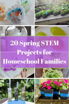 20 Spring STEM Projects for Homeschool Families - Life of a Homeschool Mom Spring Activities, Stem Activities, Activities For Kids, Learning Activities, Kids Learning, Cool Science Experiments, Kid Science, Elementary Science, Physical Science