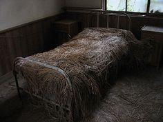 A straw bed at tuberculosis isolation ward / old ruin hospital in Nagasaki