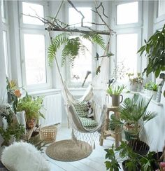 Lots of sunlight, white clean style with greenery, beautiful!