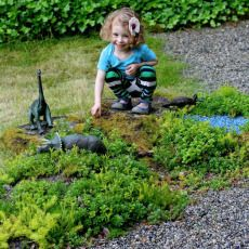 Dinosaur Garden by Fun At Home With Kids