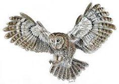https://www.google.com/search?q=flying owl drawing